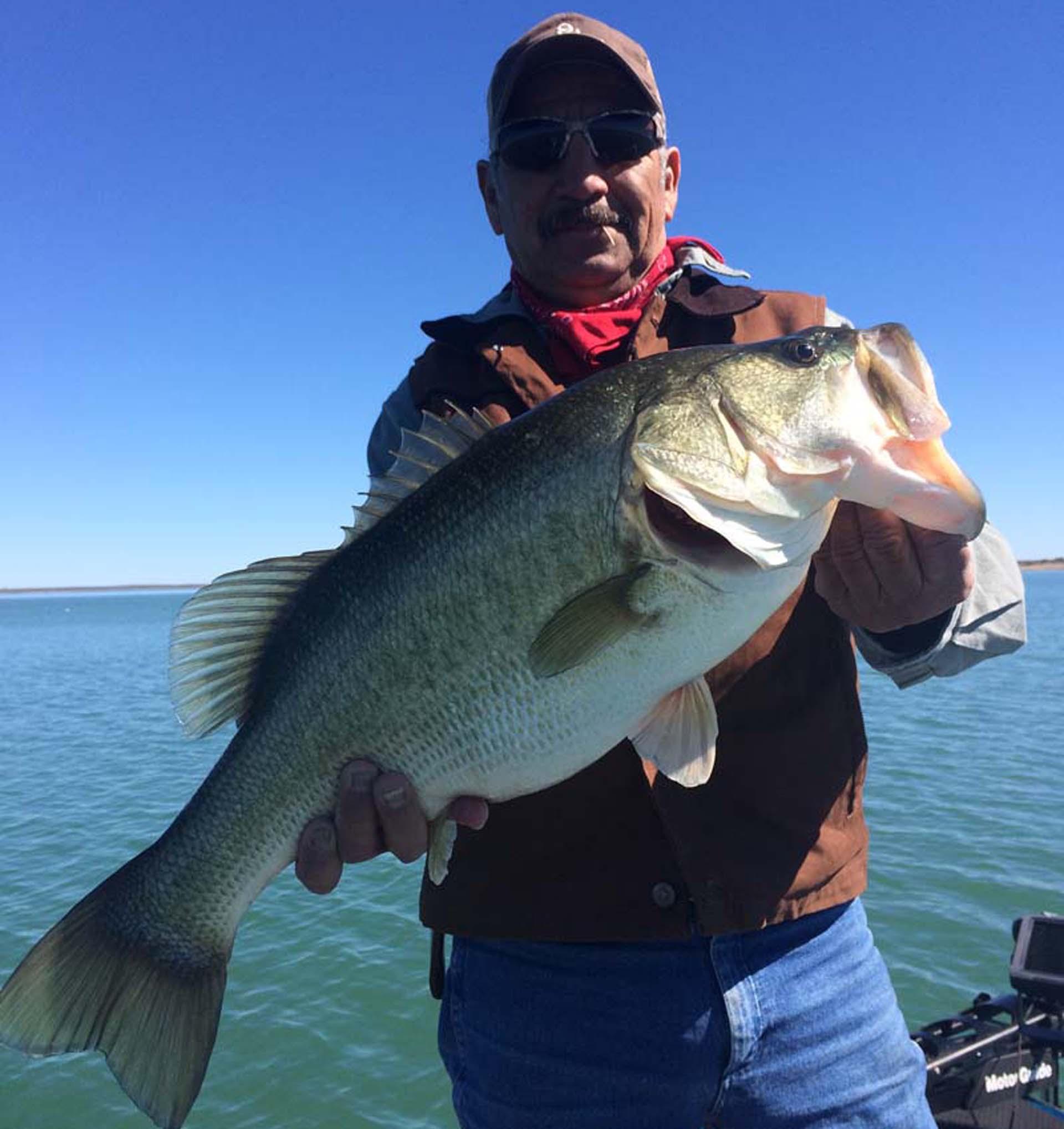 Lake amistad fishing guide amistad bass fishing guide lake for Best bass fishing lakes in texas